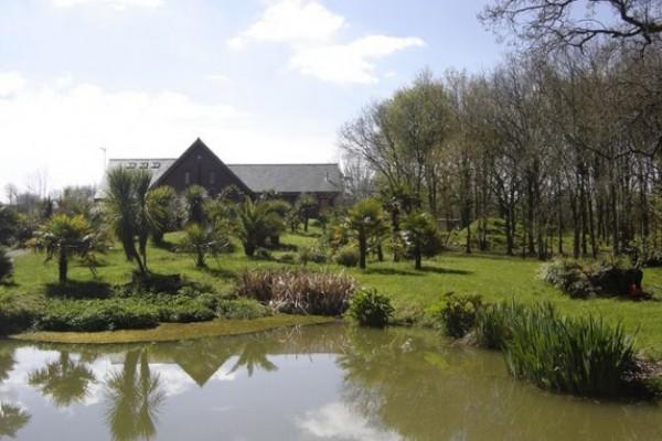 maison-parc-arbore